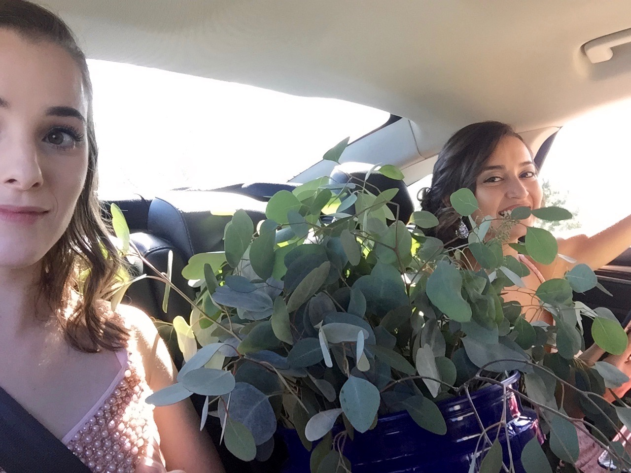 Sometimes part of being a bridesmaid means carrying a forest of flowers and eucalyptus in your car...